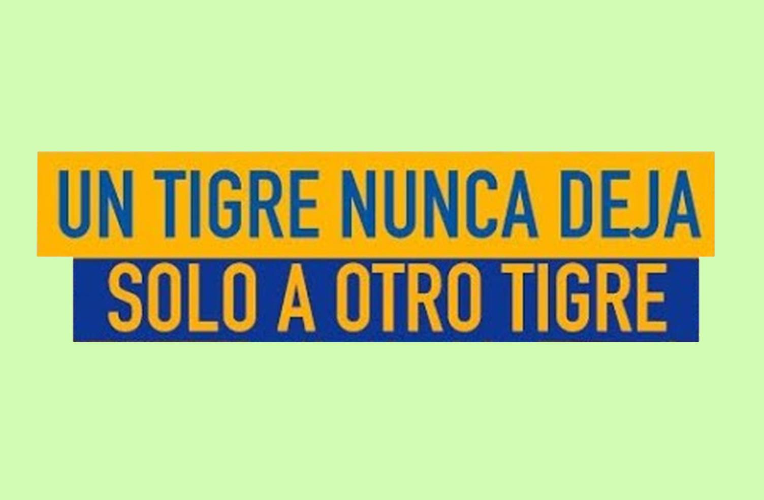 tigre nunca deja web